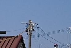 電気メンテナンス(漏電修理)